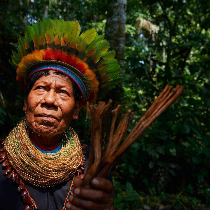 Inquietante Sínodo de la Amazonía